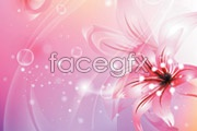 Link toFive beautiful flower background vector