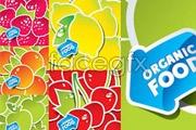 Link toFive beautiful fruit stickers vector