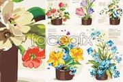 Link toFive pots of flowers vector