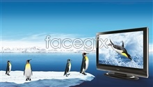 Link toFlat-panel tv poster designs psd
