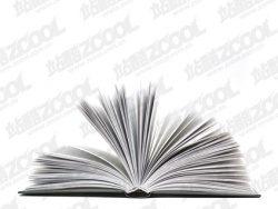 Link toFlip book boutique pictures