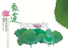 Link toFloating lotus psd free