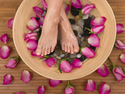 Link toFloral foam foot picture material