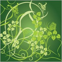 Link toFloral green background vector
