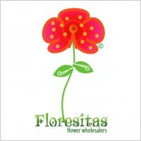 Link toFloresitas logo