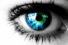 Link toFlow blue eyed vector