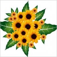 Link toFlower bouquet vector