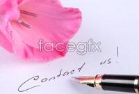 Link toFlower pen hd creative pictures