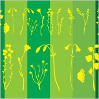Link toFlower plants