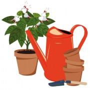 Link toFlowerpot and flower vector set 03 free