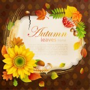 Link toFlowers 038 leaf vector photo frame 06