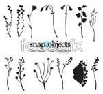 Link toFlowers and foliage silhouettes vector