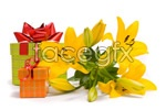 Link toFlowers and gifts 2 psd