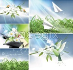 Link toFlowers and natural landscape vector