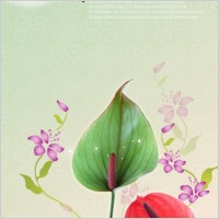 Link toFlowers background psd layered 14