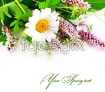 Link toFlowers green leaf psd