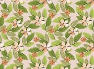Flowers wallpaper pattern vector free