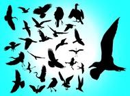 Link toFlying birds vector free