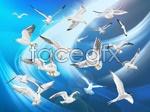 Link toFlying birds vector