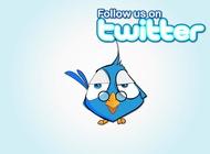 Link toFollow bird vector free