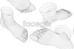Link tovector model 3d Foot