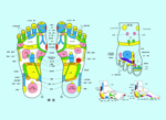 Link toFoot acupuncture points map psd
