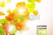 Link toFour fall foliage vector