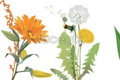 Link toFour flower eps vector