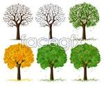 Link toFour seasons tree vector