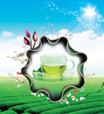Link toFragrance of green tea in the tea garden poster psd