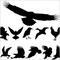 Link toFree vector birds silhouettes