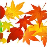 Link toFree vector foliage 02