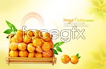 Link toFresh and ponkan oranges psd