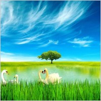Link toFresh blue sky lakes psd layered
