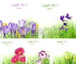 Link toFresh flowers psd