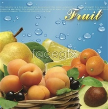 Link toFresh fruit platter psd