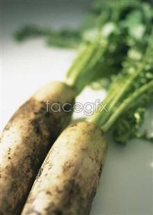Link toFresh fruits and vegetables, 175