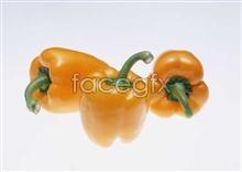 Link toFresh fruits and vegetables, 219