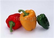 Link toFresh fruits and vegetables, 221