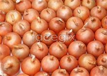 Link toFresh fruits and vegetables, 292