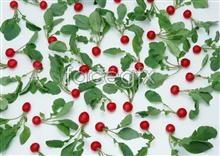 Link toFresh fruits and vegetables 297