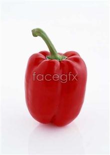 Link toFresh fruits and vegetables, 385