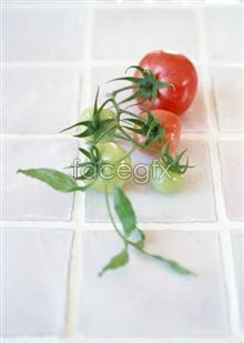 Link toFresh fruits and vegetables, 398