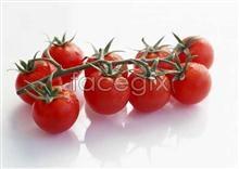 Link toFresh fruits and vegetables, 410