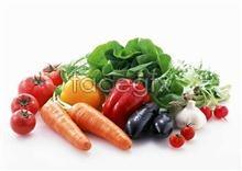 Link toFresh fruits and vegetables, 439
