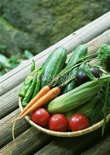 Link to574 vegetables, and fruits Fresh
