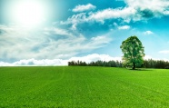 Link toFresh grassland beautiful pictures download