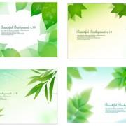 Link toFresh green background design elements vector
