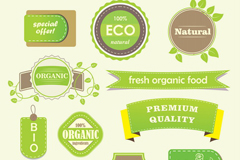 Link toFresh green food label vector