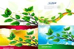 Link toFresh green leaf and ladybug vector